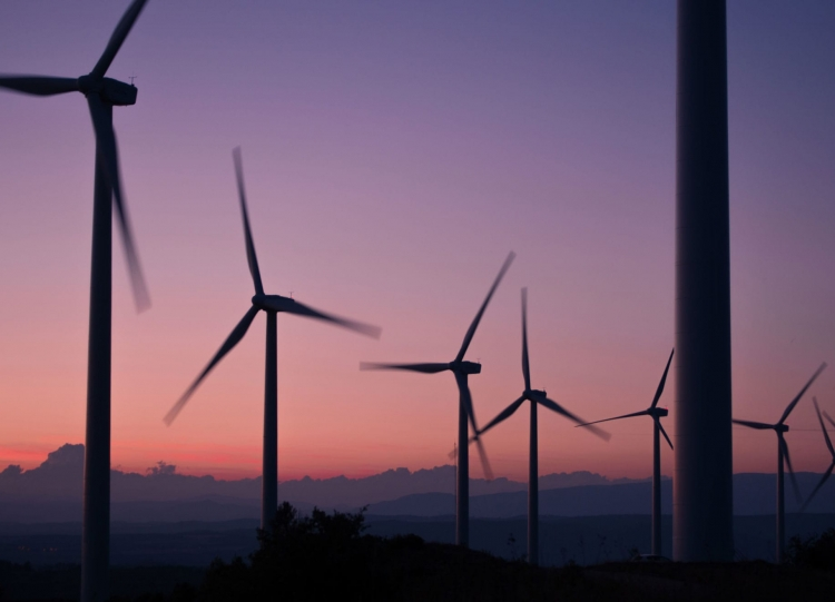 vesta-windfarm